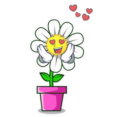 In love daisy flower mascot cartoon