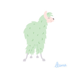 Vector illustration of  llama
