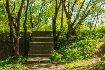 Staircase in an old abandoned park - romantic rural landscape