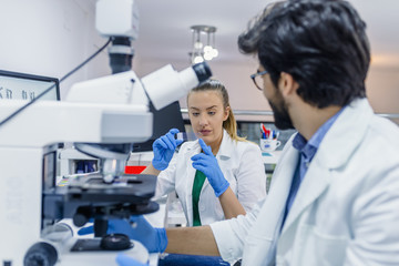 Fototapeta Young chemists working on scientific research in a laboratory.