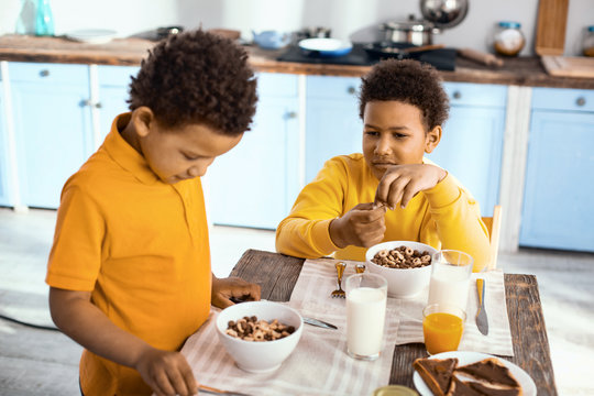 Curious about breakfast. Charming curly-haired boys sitting at the table and examining the cereals made for breakfast