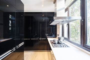 kitchen in the modern home