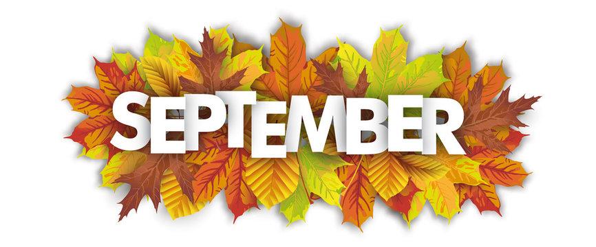Autumn Foliage September Header White Background