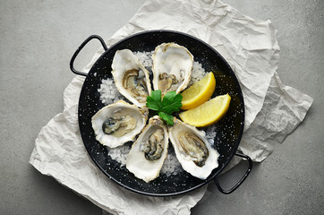 Opened Oysters on frying pan