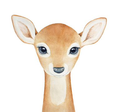 Baby Deer character. Hand drawn watercolor painting on white background, isolated. Little one, looking with big eyes. Spirit animal, symbol of love, grace, peace, humility, devotion, christmas.