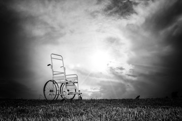 Wheelchair in a forest
