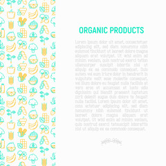 Organic products concept with thin line icons: corn, peas, raw cafe, broccoli, grapes, sprouts, seaweed, watermelon, bananas, fresh juice. strawberry. Modern vector illustration for vegetable shop