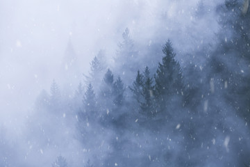 Winter mountain forest landscape during snowfall.