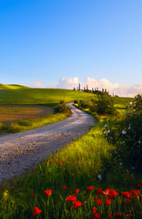 italy countryside landscape; sunset over the tuscany hills
