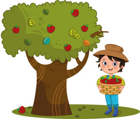 Little farmer boy at the farm with apple basket, and apple tree. Vector illustration.