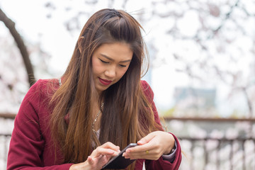 Beautiful Attractive Asian young woman using smartphone with cherry blossom in background feeling so happiness and cheerful