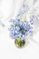 beautiful  bouquet of a blue forget me not flower