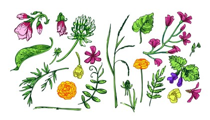 Beautiful hand drawn vector illustration floral pattern.