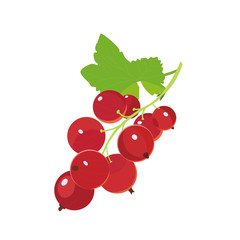 Red currants. Vector icon berry in cartoon style. Isolated on white background