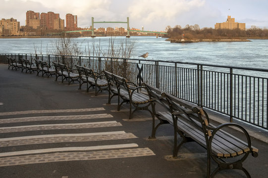 East River Benches