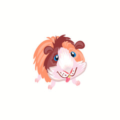 Sweet, guinea pig clipart illustration vector