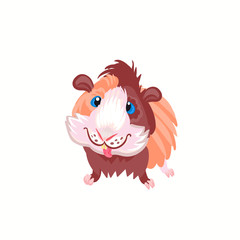 Guinea pig clipart illustration vector