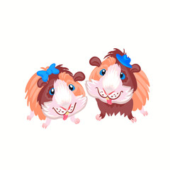 Two funny cartoon funny Guinea pigs clipart illustration vector