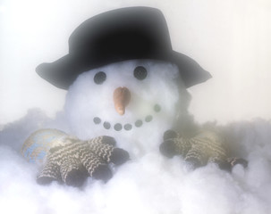 Snowman Melting Down