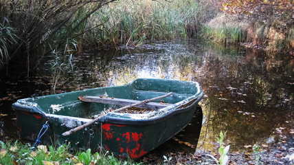 Rowboat in the swamp