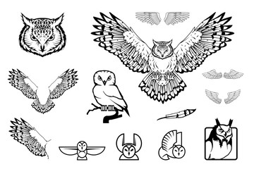 Set of owl logo. Wild birds drawing. Head of an owl. Vector graphics to design.