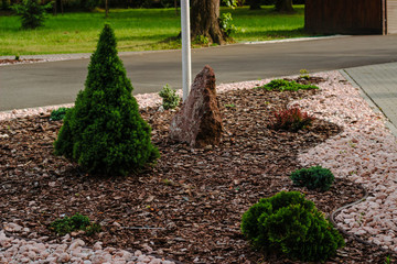 Bushes and stones of landscape design in a park