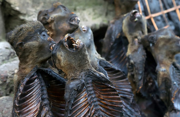 Smoked monkey meat is displayed at an open-air market during a vaccination campaign against the outbreak of Ebola, in Mbandaka