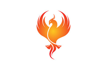 Creative Phoenix Bird Logo Design Illustration