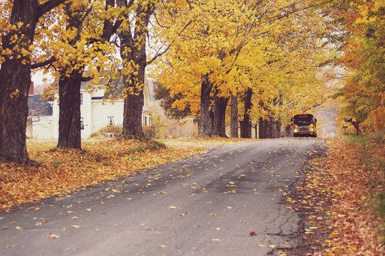 School bus on rural road in autumn