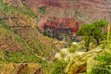 Grand Canyon National Park Mother Point and Amphitheater