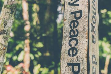 Peace word written on on a pole, peace concept. Bali island.
