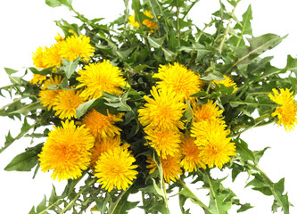 Bouquet of yellow dandelions.