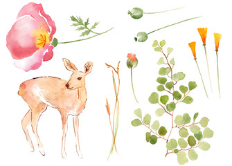 Watercolour Florals and Antelope