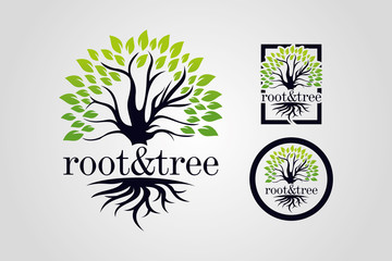 Root & Tree Logo Template Set
