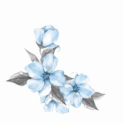 Blue watercolor flowers. Floral branch, isolated on white background