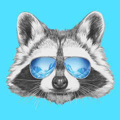 Portrait of Raccoon with sunglasses,  hand-drawn illustration