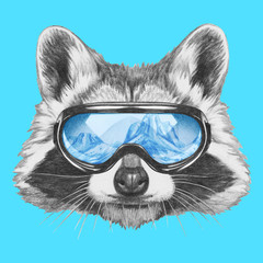 Portrait of Raccoon with goggles,  hand-drawn illustration