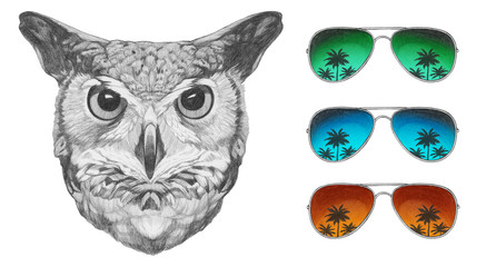 Portrait of Owl with mirrored sunglasses,  hand-drawn illustration