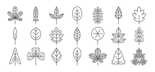 Leaf line icon. Foliage thin simple outline. Contour vector collection Wall mural