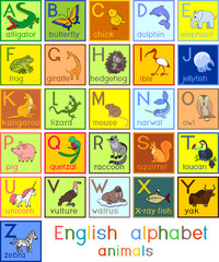 Colorful english alphabet with pictures of different cartoon animals and titles for children education