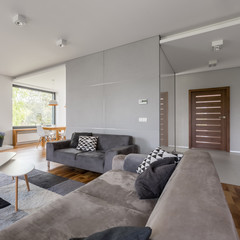 Tv living room with sofa