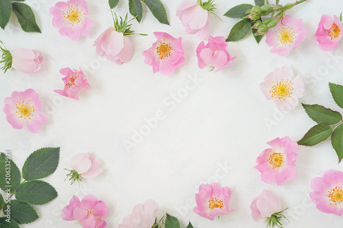 Round frame wreath pattern with roses pink flower buds branches round frame wreath pattern with roses pink flower buds branches and leaves isolated on mightylinksfo Gallery