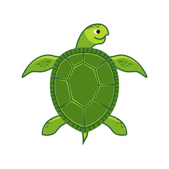 Green Sea Turtle icon, Vector