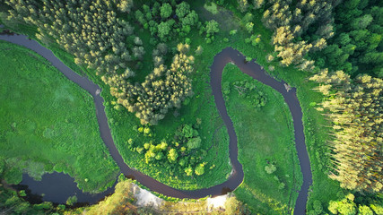 Aerial view of natural river in spring