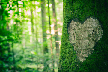 Heart Tree Shape
