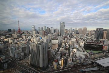 Cloudy Tokyo seen from a skyscraper/広角レンズを使用し高層ビルから撮影したくもりの東京