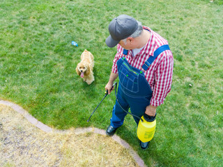 Man spraying grass in his yard watched by his dog