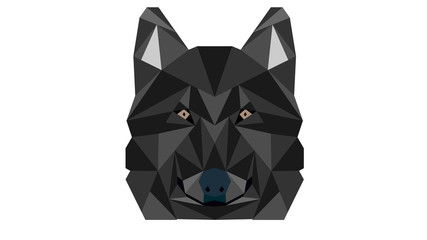 Vector polygonal wolf head illustrastion