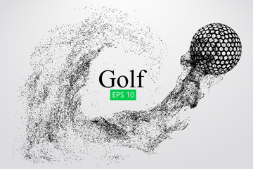 Silhouette of a golf ball. Vector illustration