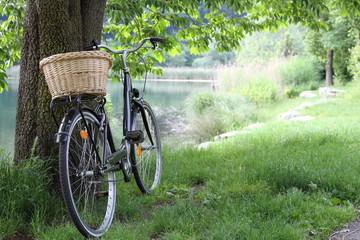 bicicletta con cestino appoggiato ad albero con sfondo alberi  un lago